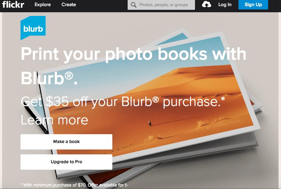 flickr-blurb.png